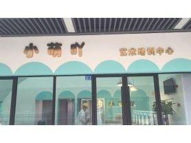 小萌吖艺术培训中心
